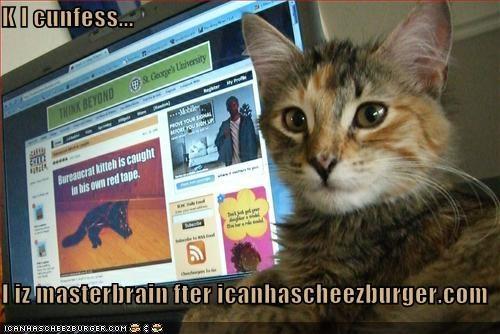 Cheezburger Image 1402967808
