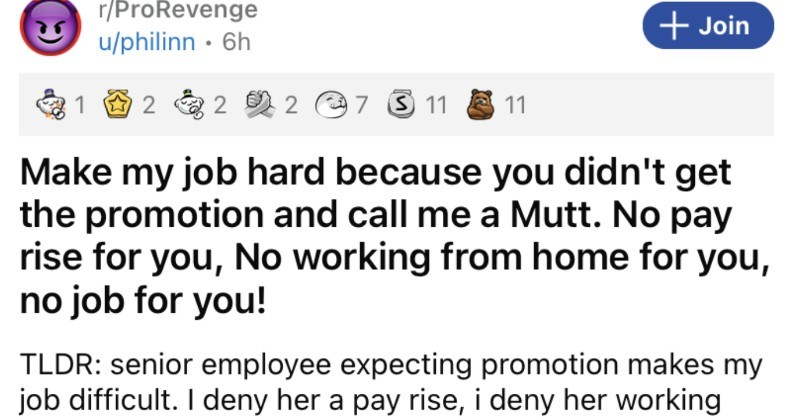 A toxic Karen coworker gets her rightful comeuppance in a pro revenge.