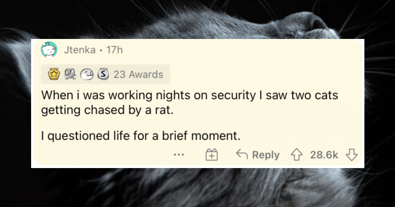 People describe their most wildly unexpected moments throughout life.
