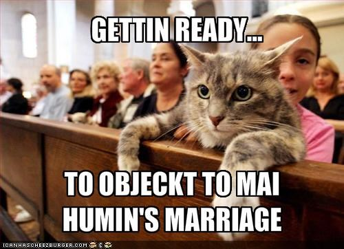 court human lolcats marriage object owner ready - 1406064896