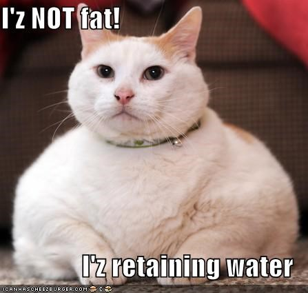 I'z NOT fat!  I'z retaining water