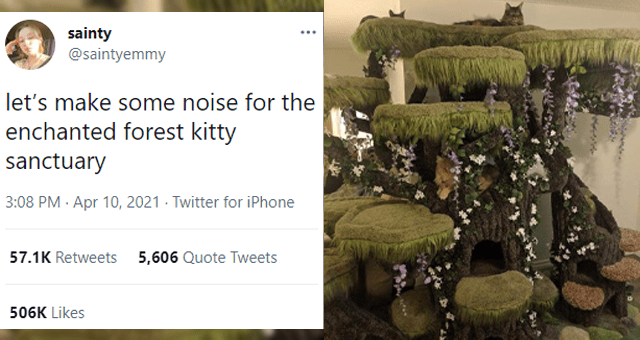 This week's collection of cat tweets thumbnail includes a picture of a cat on a huge forest cat tree and one tweet 'Plant - sainty @saintyemmy let's make some noise for the enchanted forest kitty sanctuary 3:08 PM · Apr 10, 2021 Twitter for iPhone 57.1K Retweets 5,606 Quote Tweets 505.9K Likes'