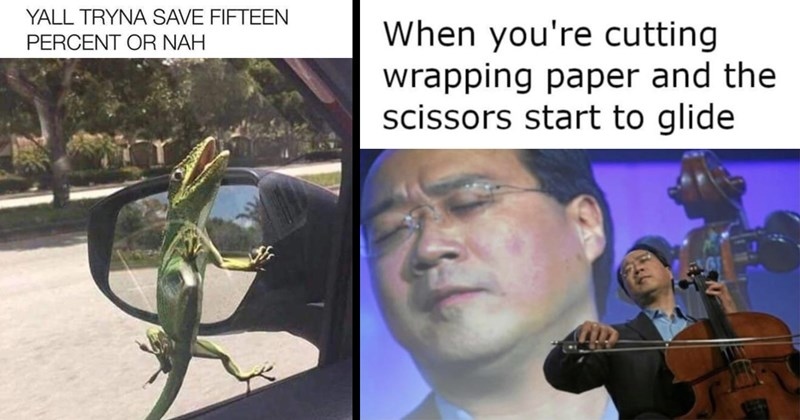 meme dump, funny memes, random memes, dank memes, spicy memes, good memes, shitposts, memes, funny, humor, lol