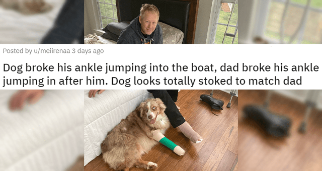 pics and vids of the cutest animals of the week thumbnail includes a picture of a dog in a cast and a dad in a cast 'Dog broke his ankle jumping into the boat, dad broke his ankle jumping in after him. Dog looks totally stoked to match dad u/meiirenaa'