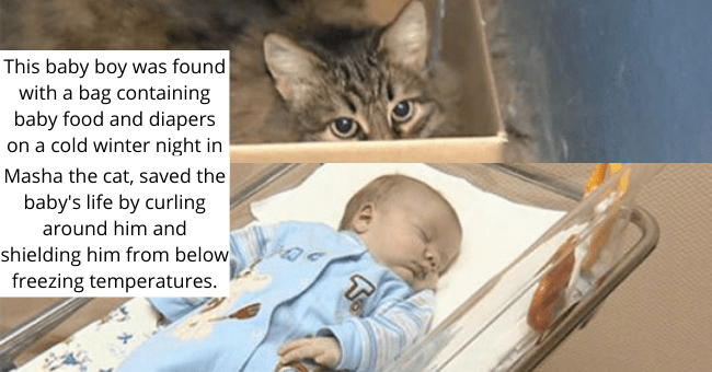 tumblr thread about a cat who saved a baby from freezing thumbnail includes two pictures including one of a baby and one of a cat in a box 'This baby boy was found with a bag containing baby food and diapers on a cold winter night in Obninsk, Russia. Masha the cat, saved the baby's life by curling around him and shielding him from below freezing temperatures.'