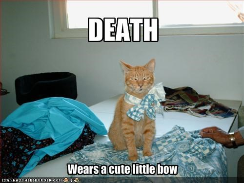 bow costume cute Death lolcats - 1410636032