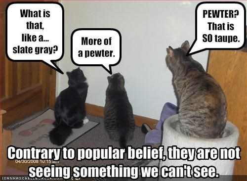 Contrary to popular belief, they are notseeing something we can't see.