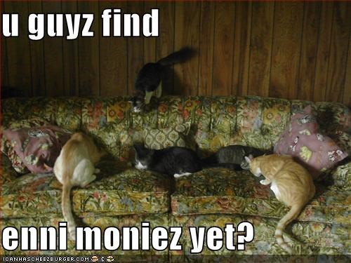 coins couch find lolcats money searching