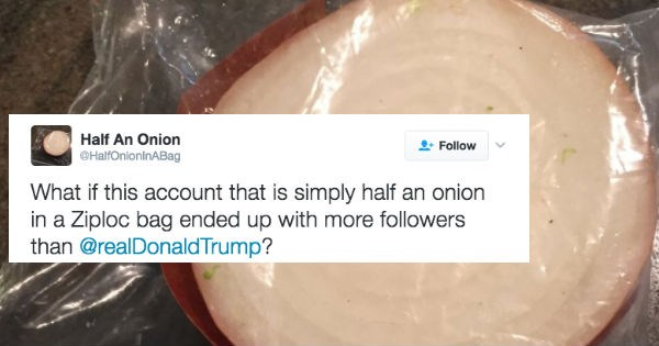 twitter onion donald trump election 2016 ridiculous politics - 1413893