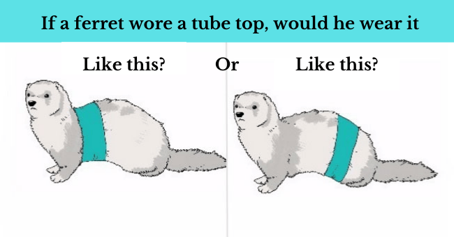 The Funniest Rebuttals To The 'If A Dog Wore Pants' Meme| thumbnail text - Like this OR Like this Fig. 1 Fig. 2