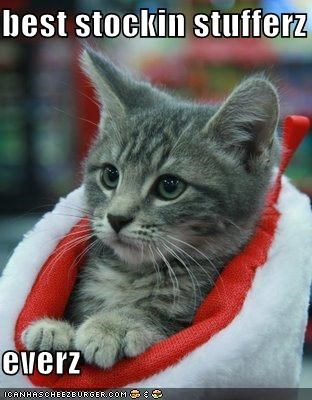 awesome christmas lolcats present stocking - 1422277376
