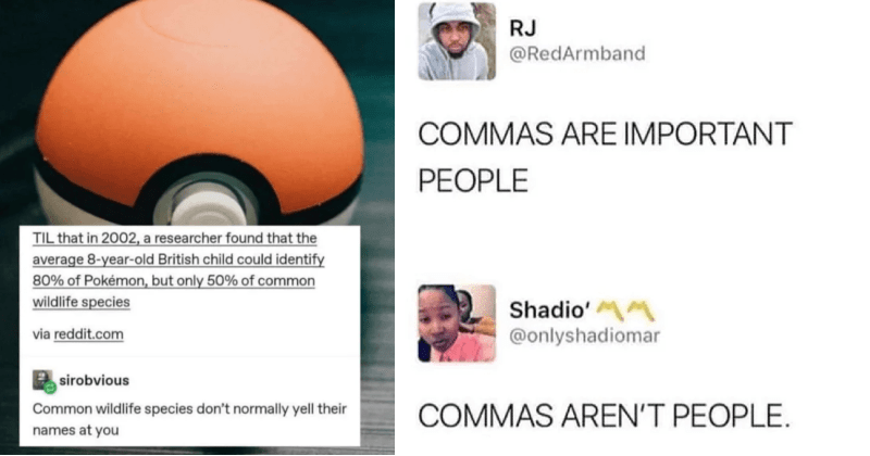 A collection of clever comebacks from the internet's talented wordsmiths.