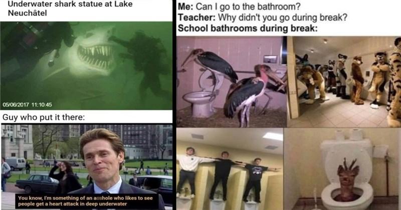 meme dump, funny memes, memes, dank memes, dumb memes, funny tweets, funny pics, tumblr memes, weird memes, random memes, funny, lol