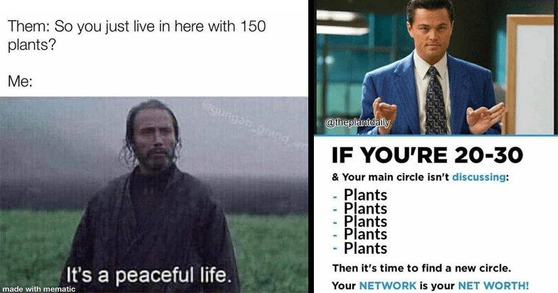 Funny memes about plants and gardening, relatable
