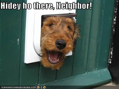 airedale terrier,doggie door,head,hello,neighbors