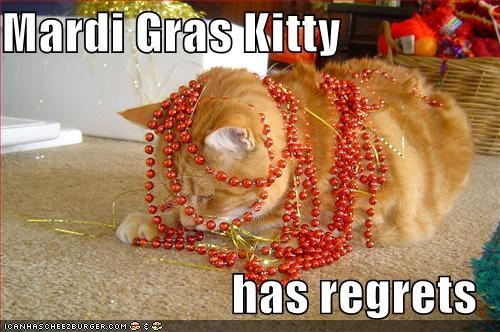 beads lolcats Mardi Gras regrets shame - 1430035200