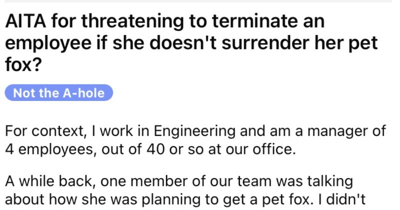 An employee gets a pet fox, stinky smells ensue, boss calls her out, and she complains.