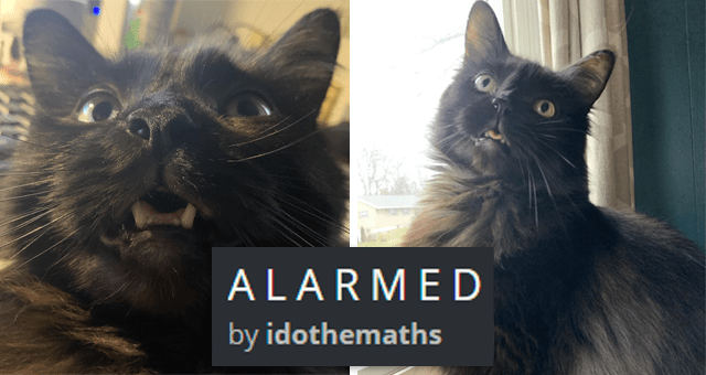 viral imgur thread of a cat who constantly looks alarmed | thumbnail includes two pictures of a surprised looking cat 'A L A R M E D by idothemaths'