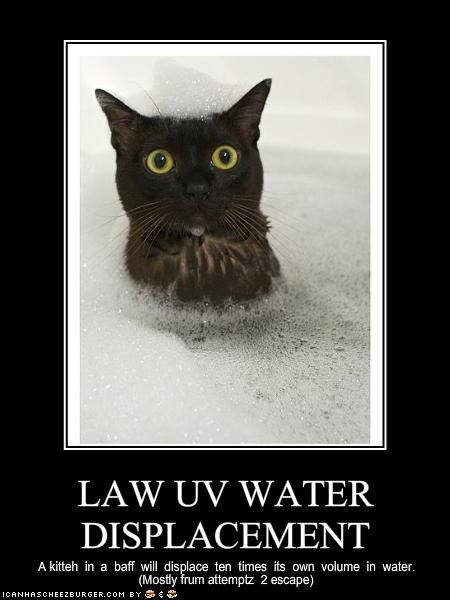 bath bubbles escape law lolcats water - 1431909120