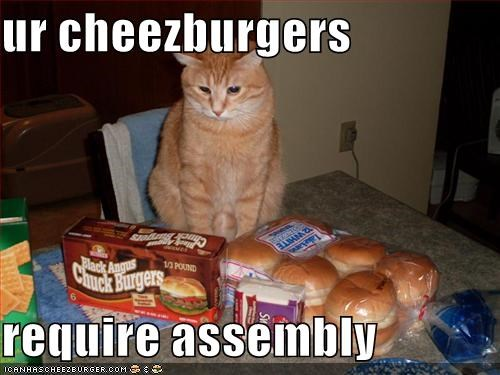 Cheezburger Image 1431919872