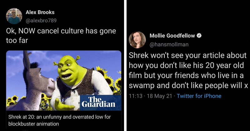 shrek, movie, review, critic, criticism, outrage, twitter, anniversary