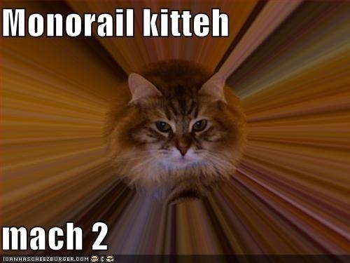 fast lolcats mach 2 mororail cat - 1432018688