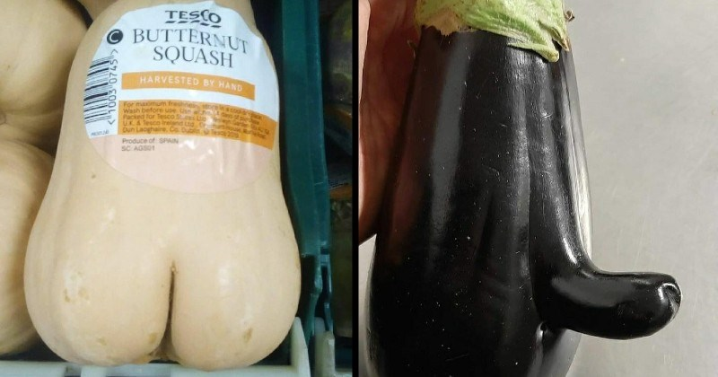 funny suggestive vegetables