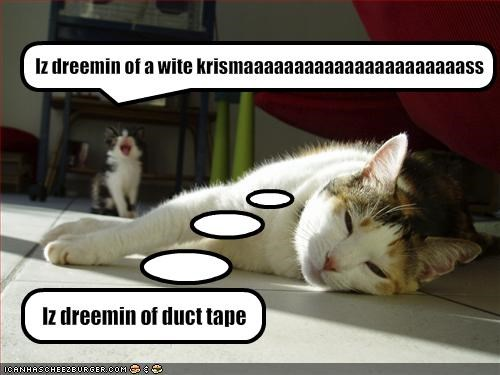 carol,christmas,cute,duct tape,holiday lols 2010,kitten,lolcats,lolkittehs,murder,plotting,singing