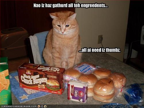 cheezburger,fud,ingredients,lolcats,no thumbs,nom nom nom