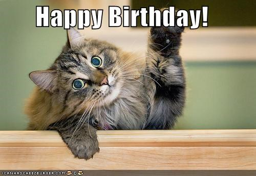 happy birthday meme of a cute cat waving its paw