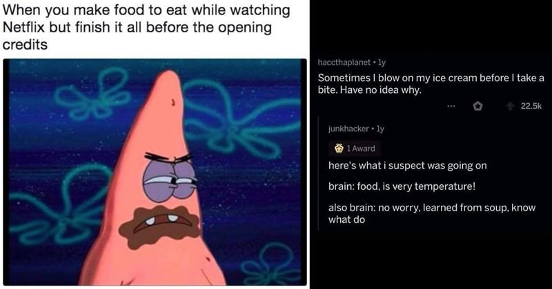 food memes, funny memes, dumb memes, hungry, food, relatable memes, memes, lol, pizza memes, eating, munchies, foodie memes, animal memes, cooking memes