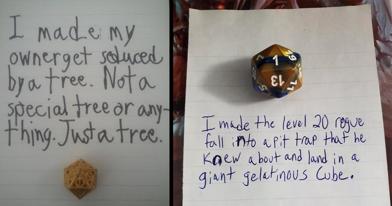 dice shaming, dnd, d&d, dungeons and dragons, funny, d&d memes, tabletop games, gaming, gamers, rpg, cosplay, fail