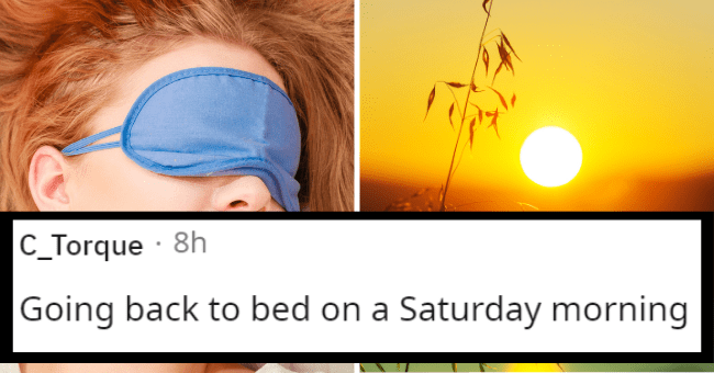 Reddit thread about the human experience | thumbnail text - C_Torque · 8h Going back to bed on a Saturday morning