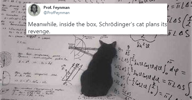 """list of 15 animal related tweets 