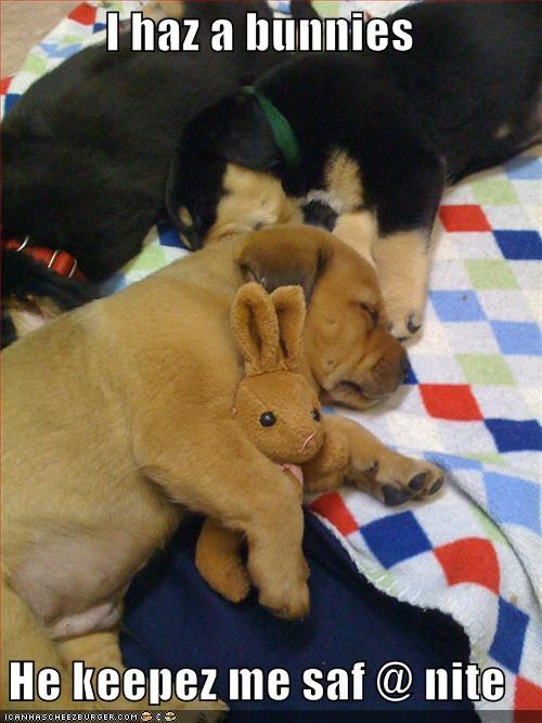 bunny,cuddle,golden retriever,puppy,rottweiler,safe,sleep,stuffed animal,toy