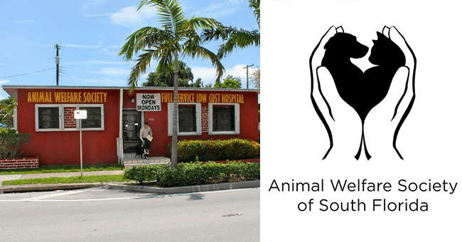 one video and eleven images of the animal welfare society of south Florida | thumbnail left picture of pet hospital from outside, thumbnail left is society's logo