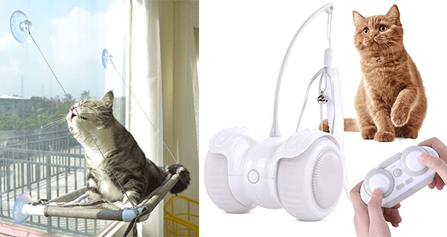 collection of cat toys and products | thumbnail includes two pictures including a cat lying on a tiny hammock and a controller controlled cat toy