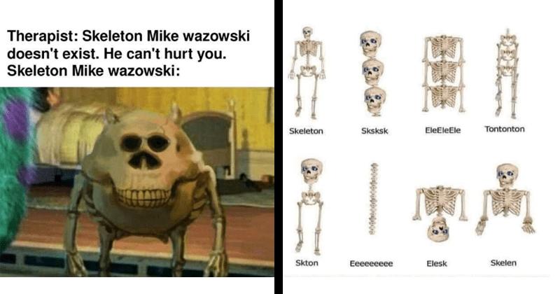 skeleton, skeletons, spoopy, bones, funny, funny memes, dank memes