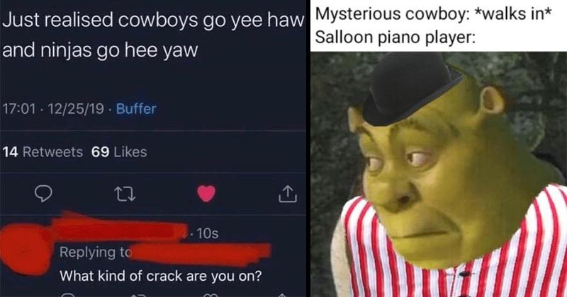 Funny dank cowboy memes, lol, random memes, funny memes, yeehaw, western, animal cowboys, animal memes, funny tweets, cowboy hats