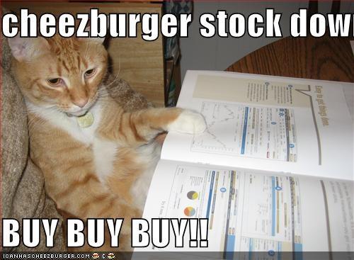 Cheezburger Image 1444924160