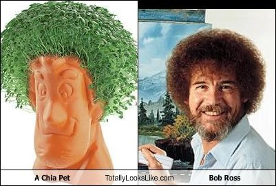 A chia pet totally looks like bob ross cheezburger funny memes cheezburger image 1445284096 voltagebd Gallery