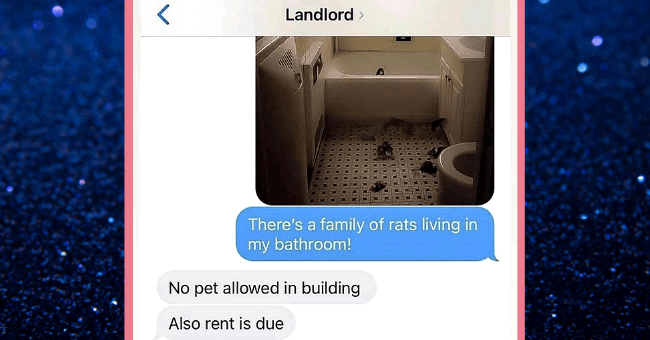 Major Fails That Somehow Ended Up Documented On Twitter For Eternity| thumbnail text - Landlord > There's a family of rats living in my bathroom! No pet allowed in building Also rent is due