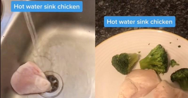 A quick list of TikTok videos that show off gross sink recipes.