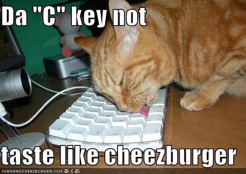 "Da ""C"" key not  taste like cheezburger"