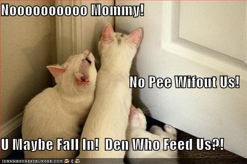 annoying bathroom cute scared - 1451150592