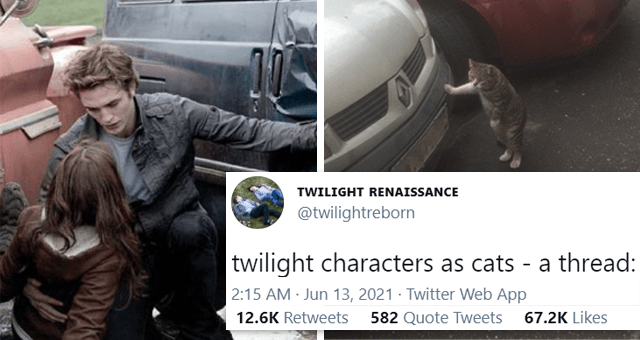 viral twitter thread of Twilight characters as cats | thumbnail includes two pictures including Edward saving Bella from a car and a cat with its paw on a car 'Automotive parking light - TWILIGHT RENAISSANCE @twilightreborn twilight characters as cats - a thread: 2:15 AM Jun 13, 2021 - Twitter Web App 12.4K Retweets 578 Quote Tweets 66.2K Likes'
