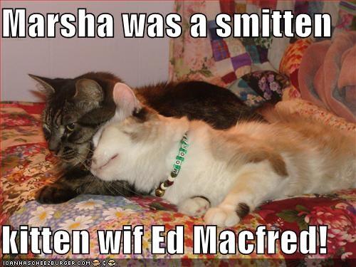 Marsha Was A Smitten Kitten Wif Ed Macfred Cheezburger Funny