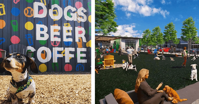 "16 images of bark social dog bar | thumbnail left dog in front of sign ""dogs, beer, coffee"" thumbnail right digital creation of bark social dog bar"