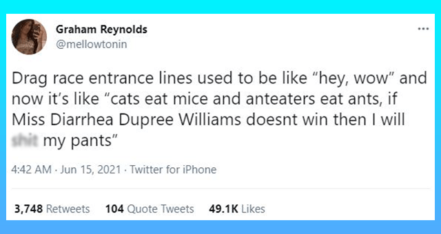 """This week's collection of cat tweets 