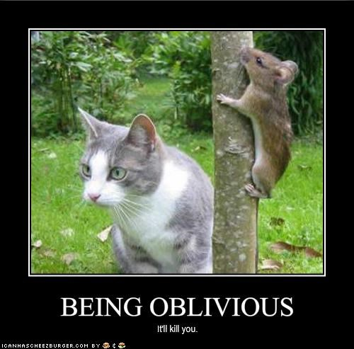 Image result for pics of being oblivious